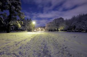 明け方の積雪の代々木公園の写真素材 [FYI01444645]