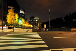 横断歩道と馬場先濠の銀杏並木の写真素材 [FYI01444717]