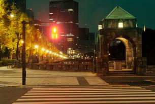 横断歩道と馬場先濠の銀杏並木の写真素材 [FYI01444819]