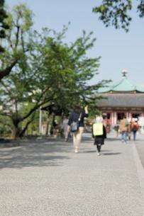 上野不忍池弁天堂の参道の写真素材 [FYI01444867]