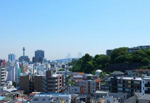 高台から見る新緑の町並の写真素材 [FYI01444909]