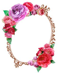 花とフレームのイラスト素材 [FYI01445551]