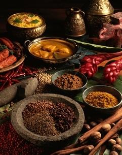 スパイスとインド料理の写真素材 [FYI01445671]