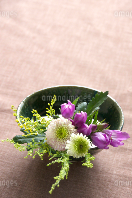 秋の花と器の写真素材 [FYI01445698]