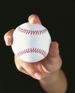 手に握る野球ボールの写真素材 [FYI01445913]