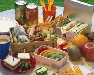 ピクニックの弁当の写真素材 [FYI01445966]