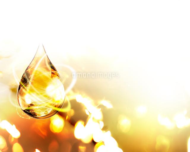 光るしずくの写真素材 [FYI01446387]