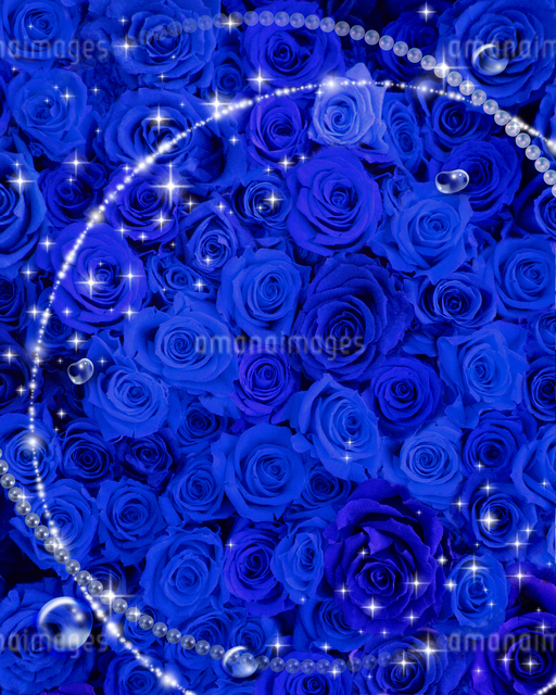 青いバラとフレームのイラスト素材 [FYI01446427]