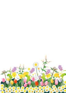春の花のイラスト素材 [FYI01446480]