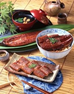 うなぎ料理の写真素材 [FYI01446826]