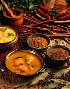 スパイスとインド料理の写真素材 [FYI01447084]