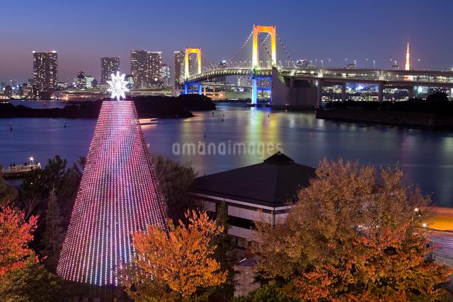 お台場のクリスマスイルミネーションの写真素材 [FYI01449249]