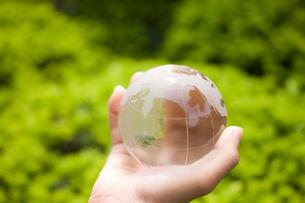 ガラスの地球儀を持つ子供の手の写真素材 [FYI01450690]