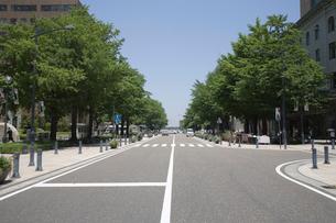 日本大通りの写真素材 [FYI01450879]
