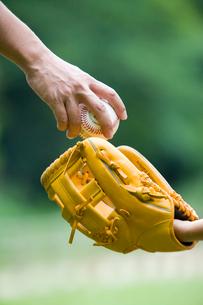 野球のボールを渡す親子の手とグローブの写真素材 [FYI01450972]