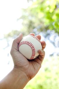 野球のボールを握る手の写真素材 [FYI01451017]