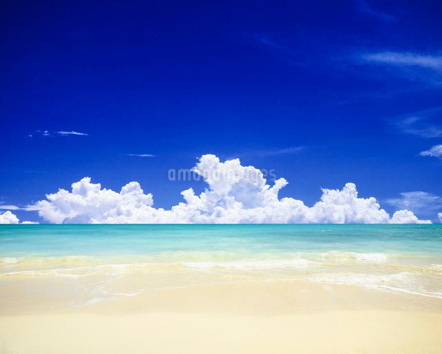 ビーチと雲の写真素材 [FYI01451093]