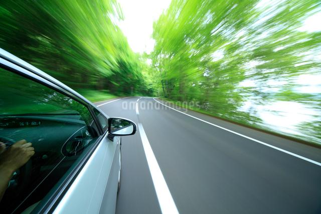 新緑の道を走るハイブリッドカーの写真素材 [FYI01451229]