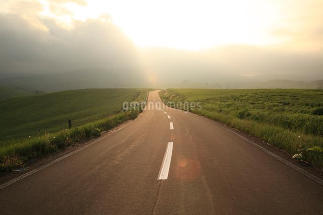 夕暮れの一本道の写真素材 [FYI01451410]