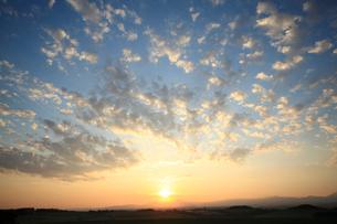 朝日昇る朝焼けの麦畑の写真素材 [FYI01451647]