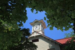 札幌時計台の写真素材 [FYI01451729]