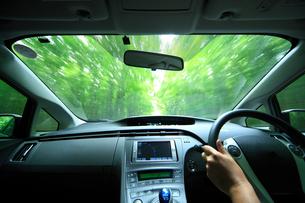新緑の道を走るハイブリッドカーの運転席の写真素材 [FYI01451829]