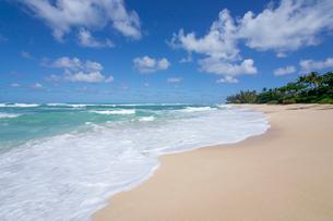 ノースショアの砂浜と波と海と雲の写真素材 [FYI01452316]