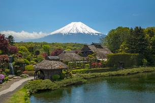 忍野八海と富士山の写真素材 [FYI01452559]