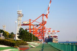 青海コンテナ埠頭の写真素材 [FYI01452580]