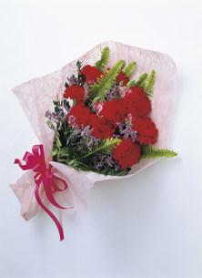 カーネーションの花束の写真素材 [FYI01452727]