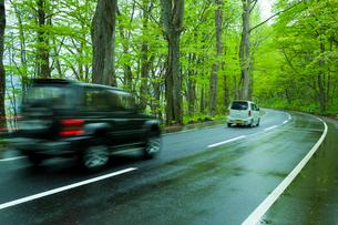 雨上がりの新緑の道と自動車の写真素材 [FYI01452878]