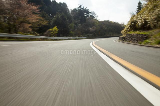 早春の山道の写真素材 [FYI01453109]