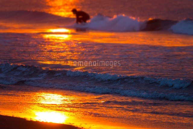 朝日とサーファーの写真素材 [FYI01453142]