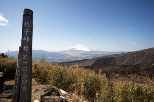 杓子峠から富士山の写真素材 [FYI01453400]