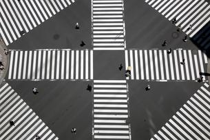 スクランブル交差点の写真素材 [FYI01453466]
