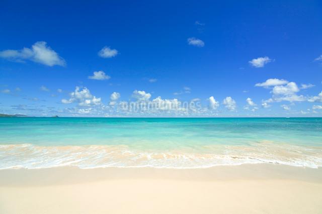 ノースショアの砂浜と波と海と雲の写真素材 [FYI01453475]