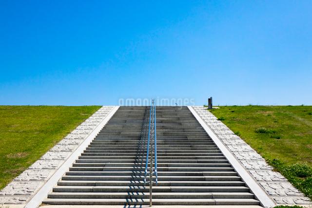 江戸川の土手の階段の写真素材 [FYI01453497]