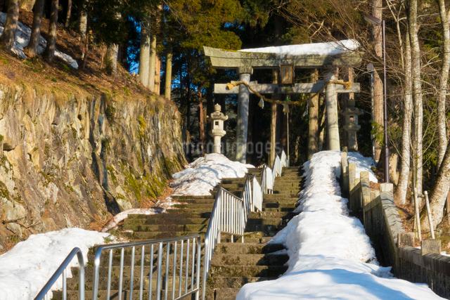 雪の気多若宮神社の写真素材 [FYI01453606]