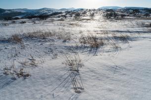 雪原と太陽の写真素材 [FYI01453656]