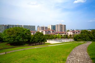 緑と住宅の写真素材 [FYI01453669]