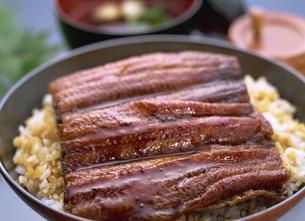 ウナギ料理の写真素材 [FYI01454313]