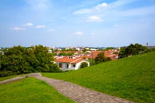 緑と住宅の写真素材 [FYI01454709]
