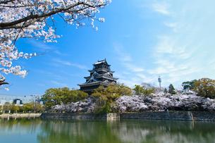 春の広島城天守閣の写真素材 [FYI01455726]