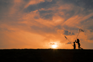 網で虫取をする姉弟と夕焼けの写真素材 [FYI01456168]