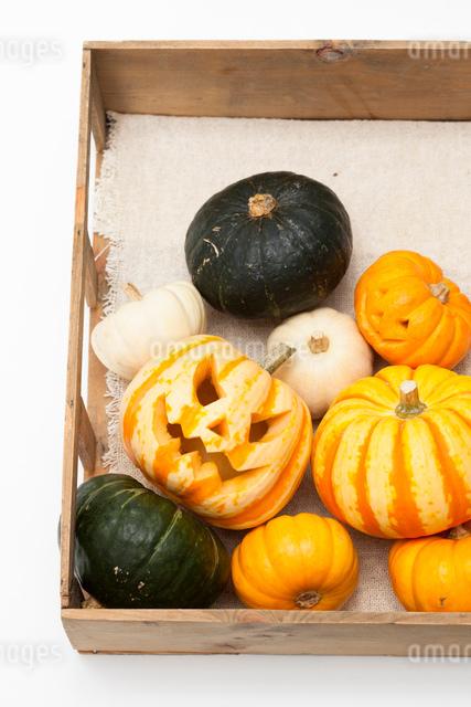 木箱に入ったハロウィンかぼちゃ達の写真素材 [FYI01456401]