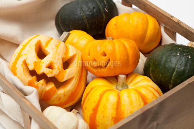 木箱に入ったハロウィンかぼちゃ達の写真素材 [FYI01456590]