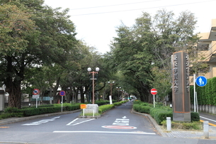 東京学芸大学の写真素材 [FYI01457263]