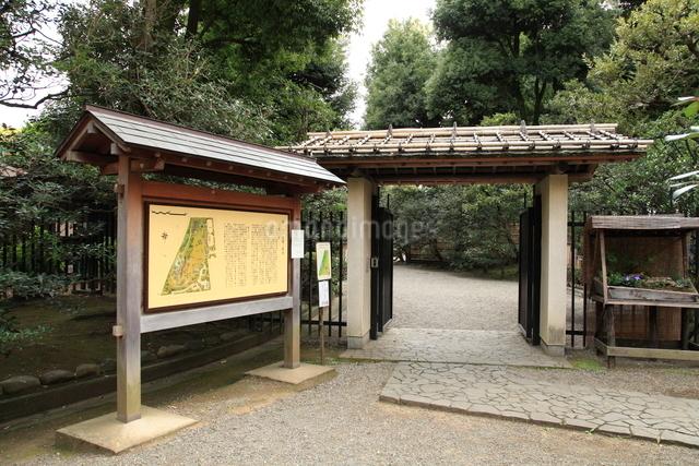都立殿ヶ谷戸庭園の写真素材 [FYI01457469]