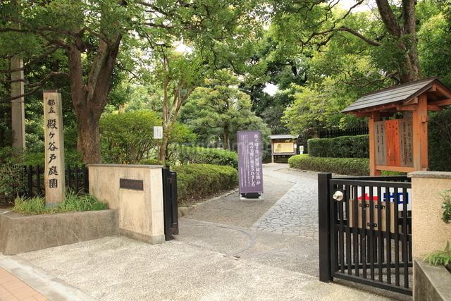 都立殿ヶ谷戸庭園の写真素材 [FYI01458080]
