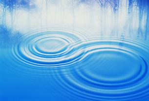 水面に映りこんだ木と水紋イメージの写真素材 [FYI01458089]